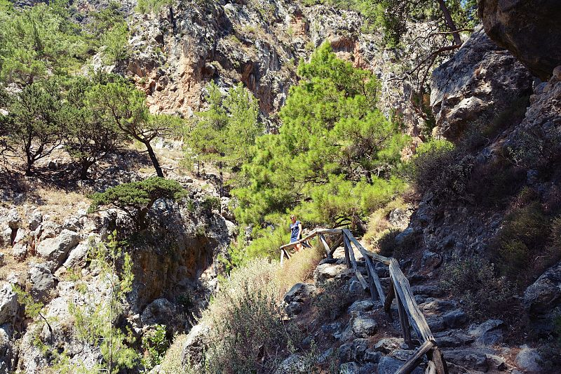 Agia Irini Gorge naKrecie - trekking wąwozem.