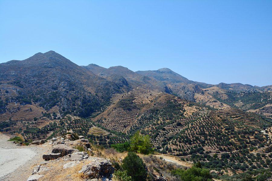 Wzgórza oliwne wdrodze naPolirinię.