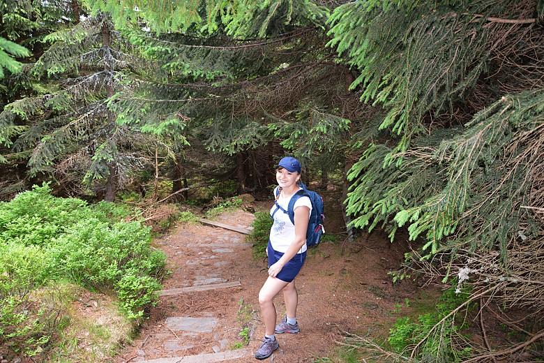 Schodzimy zniebieskiego szlaku wstronę Przełęczy Okraj.