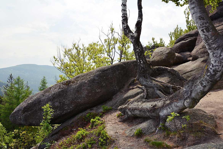 staroscinskie skaly rudawy janowickie