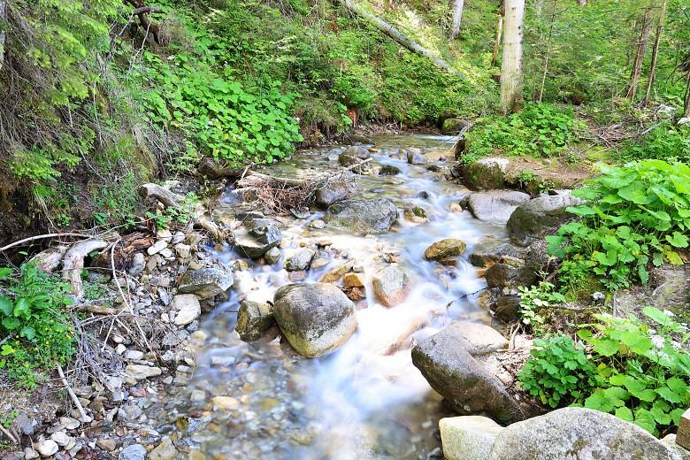 Górski potok przy szlaku zZazadniej naRusinową Polanę.