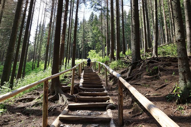 Strome schody Wiktorówki-Rusinowa Polana.